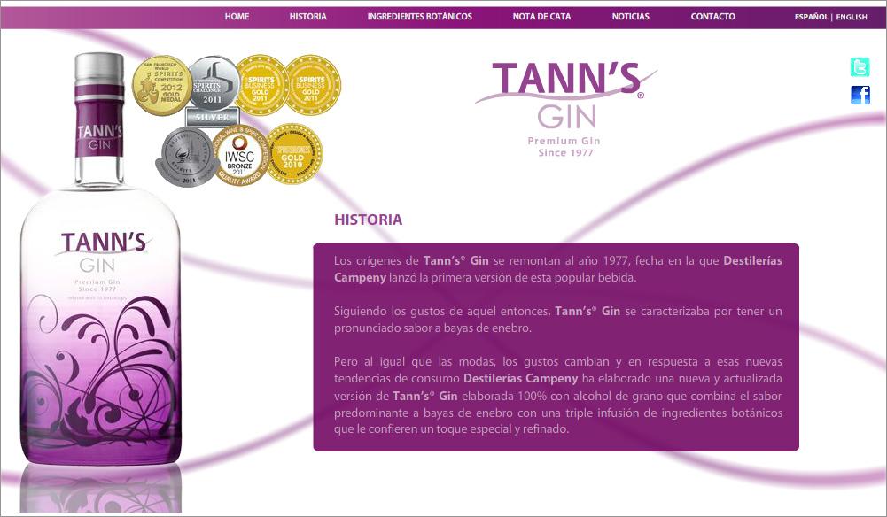 diseño y desarrollo web tanns gin